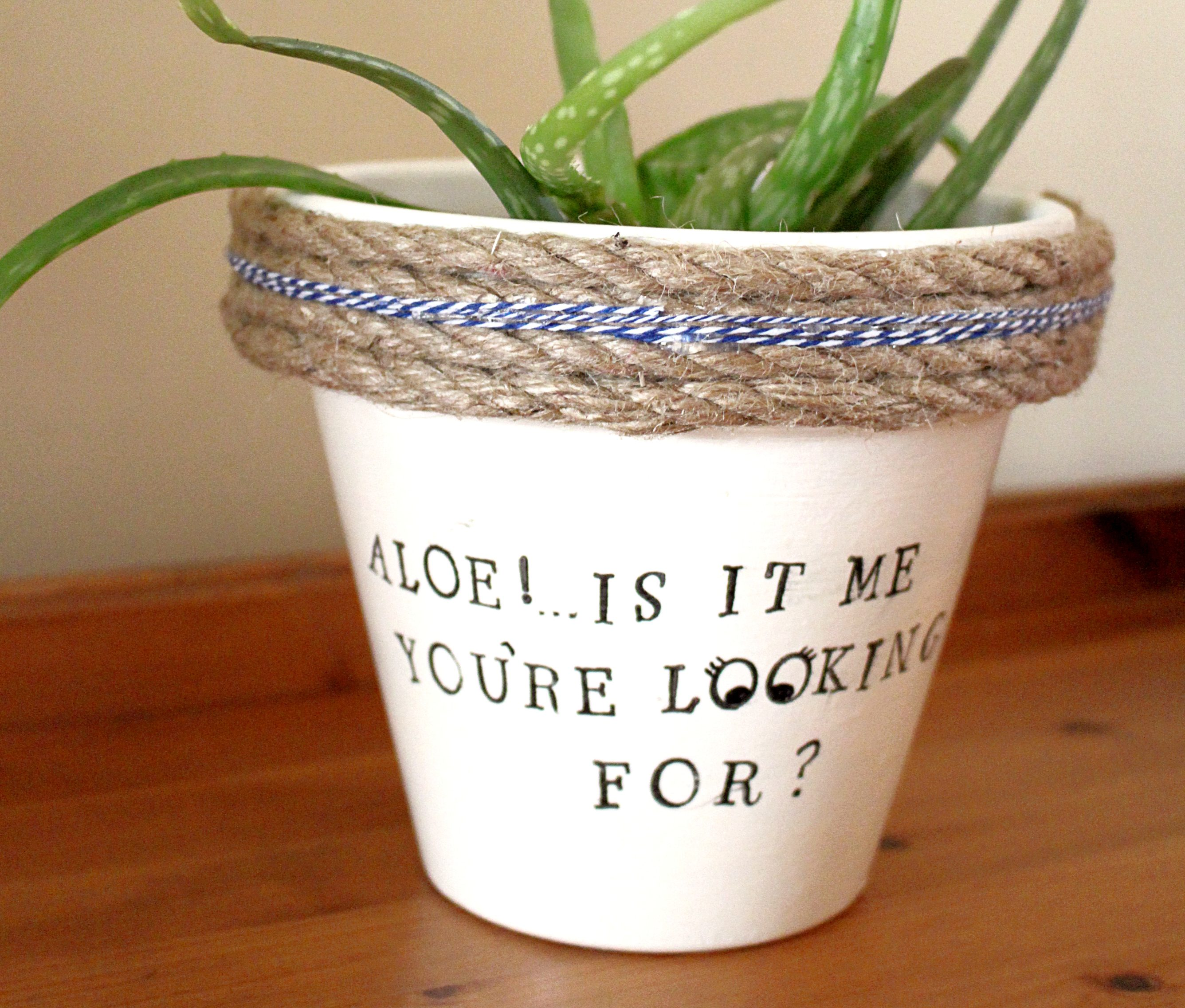 "How to make an ""Etsy inspired"" punny planter"