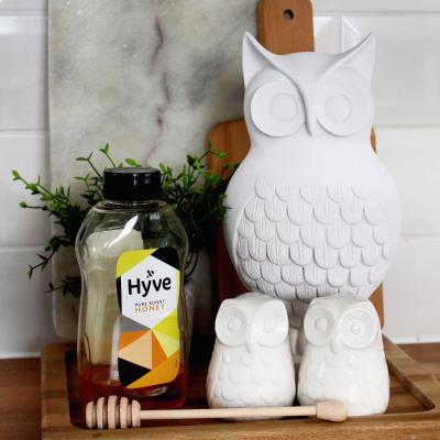 My spray paint owl make-over