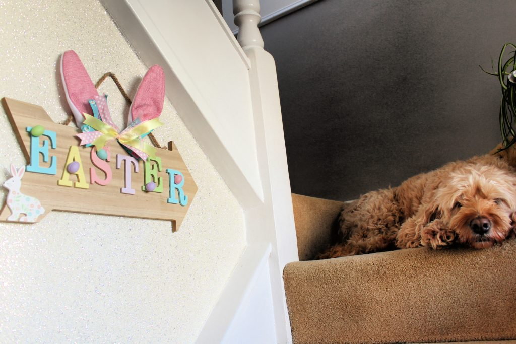 Floppy bunny ears easter sign on stairs with sleeping dog