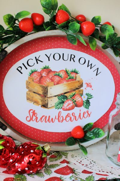 Strawberries-tray-pick-your-own-summer-project